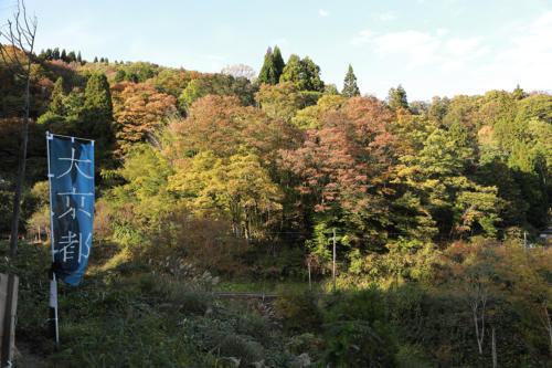 kyotango2020 tanaka013