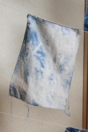 kyotango2020 tanaka040