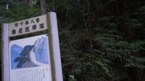 nantan koyama com02