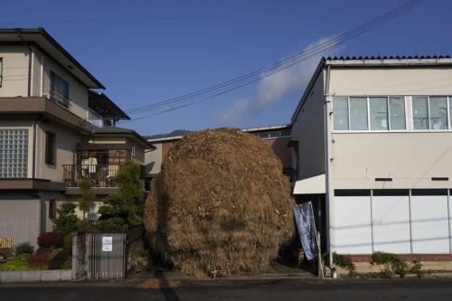 wazuka2020 makishima001