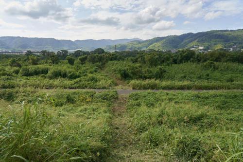 yawata sasaki04