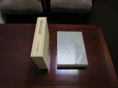 yawata shinobu04