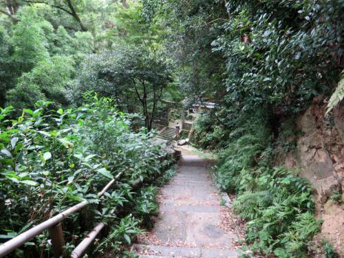 yawata shinobu05